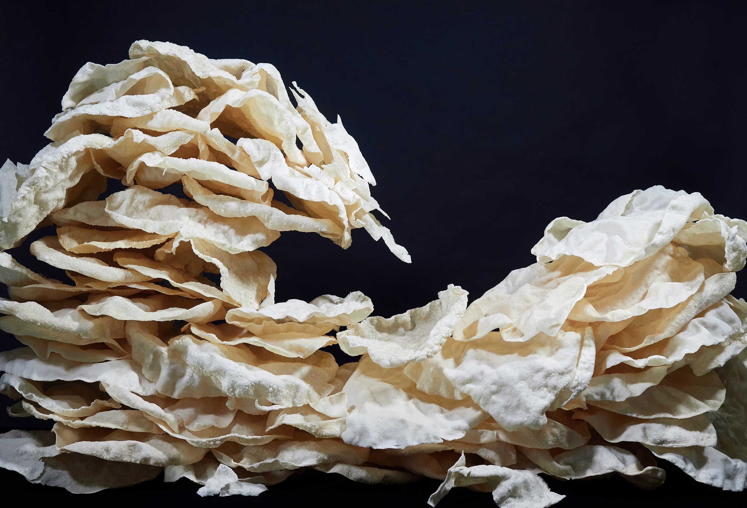 Papadum wave (after Hokusai)